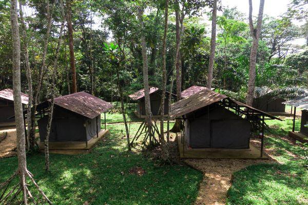 Adumbi camp - November 2020
